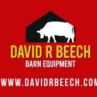 David Beech
