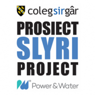Prosiectslyriproject