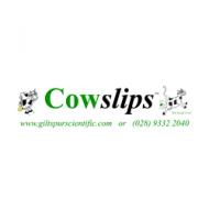 Giltspur Scientific